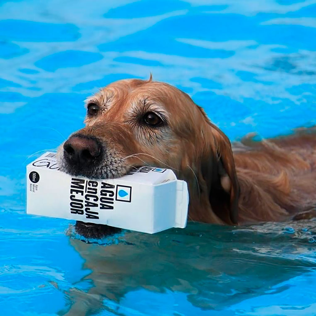 Agua en caja